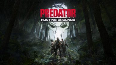 Photo of Assessment: Predator: Looking Grounds (PS4 Professional)