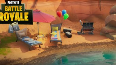 Photo of Fortnite Seaside Events Areas Information